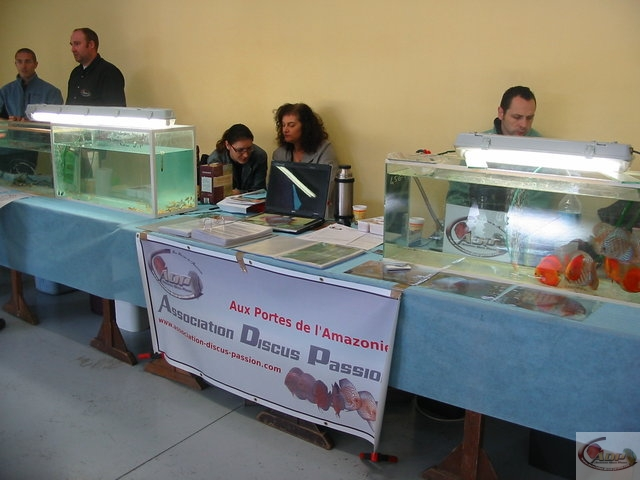 Bourse aquariophile de Bailleul - 16 octobre 2011