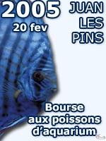 Salon Azuréen d'Aquariophile et de Terrariophilie de Juan Les Pins - février 2005