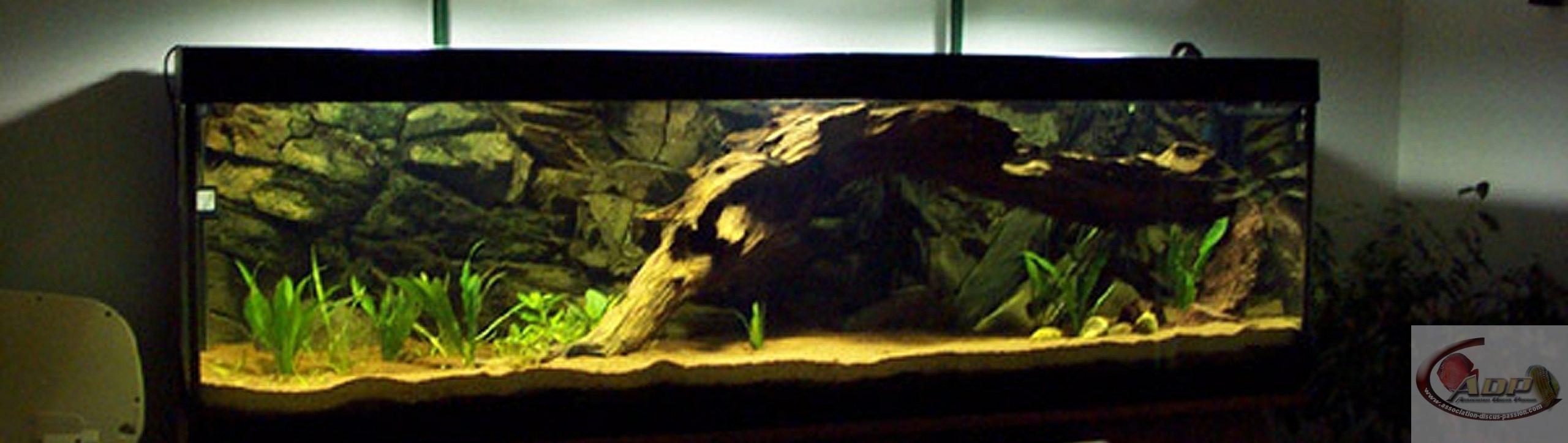 Aquarium JVB