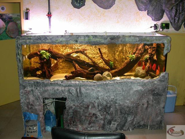 L'aquarium de Jacques